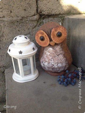 В этот раз решил сделать сову.ОНа может быть осенним декором и новогодним. И так,для такой совы понадобятся: -пакет -наполнитель(бумага,ткань и т.д.) -краски -картон -лак -соленое тесто фото 14
