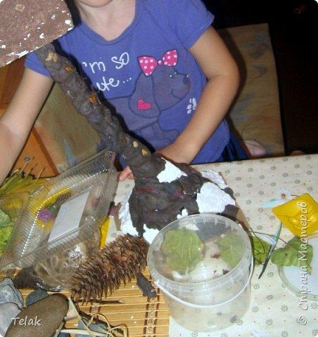Поделка из природных материалов для детского сада фото 14