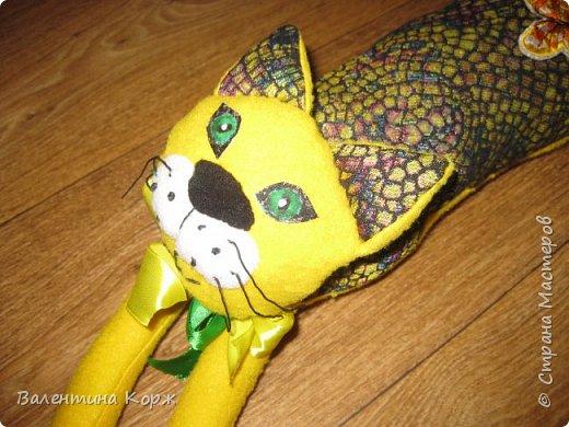 Важный кот Тимофей собрался на день рождения фото 6
