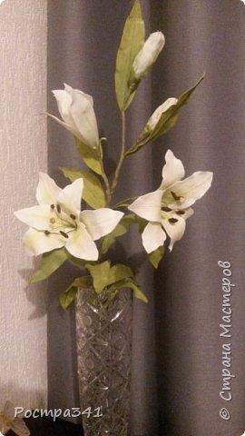 Увидела в Греции много красивых цветов, очень долго в интернете искала из чего они сделаны, и УРА, нашла , из фоамирана. Решила попробовать с чего-то начать, выбрала цветок  лилии. Процесс так увлек, что получилась целая веточка. Буду пробовать дальше.  фото 2