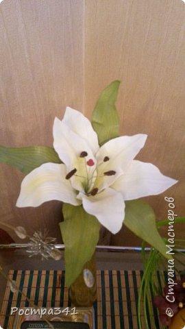 Увидела в Греции много красивых цветов, очень долго в интернете искала из чего они сделаны, и УРА, нашла , из фоамирана. Решила попробовать с чего-то начать, выбрала цветок  лилии. Процесс так увлек, что получилась целая веточка. Буду пробовать дальше.  фото 1