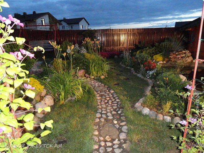12. октября  а ещё столько красок в саду. Это моя мечта ,мои мысли , мои молитвы,моя радость -моя жизнь . С мужем до глубокой ночи работаем на участке,в этом году сделали пруд. и завели много новых зелёных питомцев. фото 16