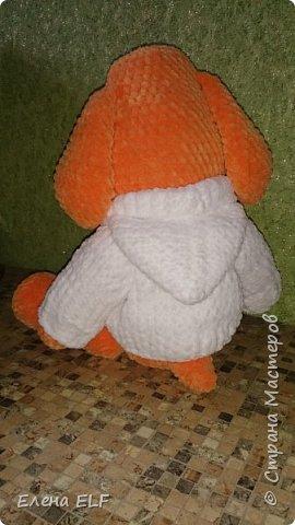 Рыженькая собачка Лизонька фото 6