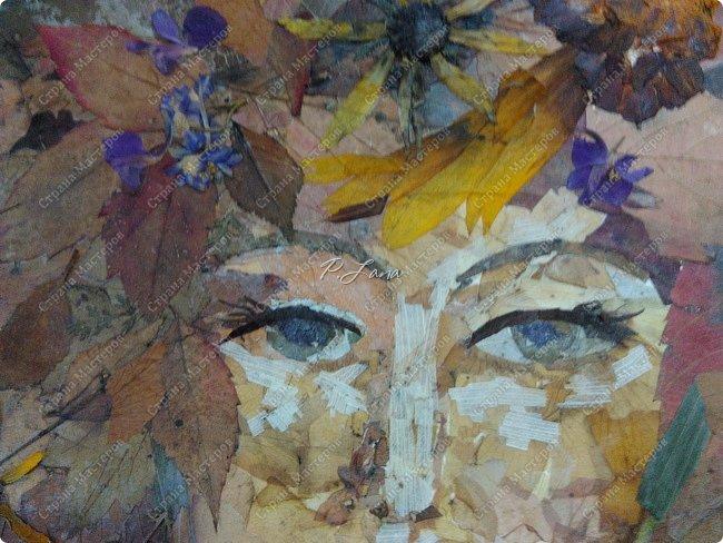 Леди Осень в платье октября- Буйство красок с лёгкой позолотой- Безрассудно-праздничный наряд. В нём танцует леди беззаботно.                           Алла Зенина. Здравствуйте,друзья!Сегодня хочу показать вам свою новую работу в технике Ошибана . Картина сделана из засушенных листьев и цветов. фото 2