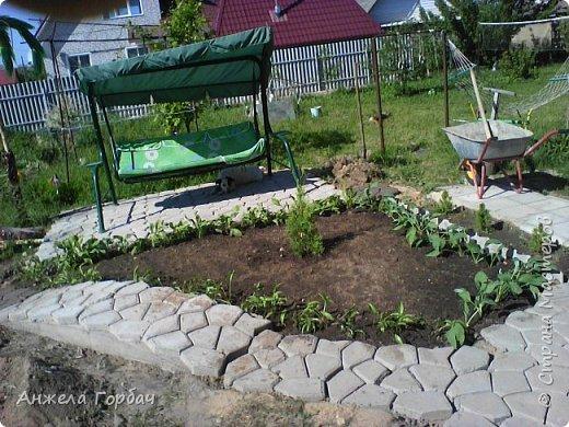 Мой дворик. фото 10