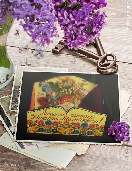 коробок для семян фото 7