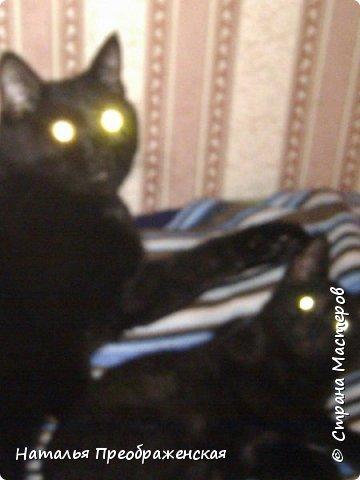 Дорогие соседи! Почитала ваши замечательные посты про кошек: http://stranamasterov.ru/node/976335 http://stranamasterov.ru/node/1016546?c=favusers http://stranamasterov.ru/node/792513 http://stranamasterov.ru/node/316026 http://stranamasterov.ru/node/99824   И решила рассказать историю про кошку в моей жизни.  фото 2