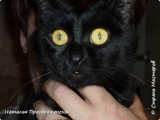 Дорогие соседи! Почитала ваши замечательные посты про кошек: http://stranamasterov.ru/node/976335 http://stranamasterov.ru/node/1016546?c=favusers http://stranamasterov.ru/node/792513 http://stranamasterov.ru/node/316026 http://stranamasterov.ru/node/99824   И решила рассказать историю про кошку в моей жизни.  фото 5