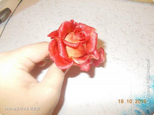 Добрый вечер, Страна! Я все не прекращаю найти свой  метод лепки розы. Приглашаю всех посмотреть на мои попытки. фото 4