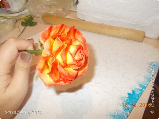 Добрый вечер, Страна! Я все не прекращаю найти свой  метод лепки розы. Приглашаю всех посмотреть на мои попытки. фото 5