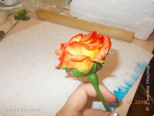 Добрый вечер, Страна! Я все не прекращаю найти свой  метод лепки розы. Приглашаю всех посмотреть на мои попытки. фото 6