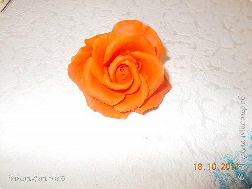 Добрый вечер, Страна! Я все не прекращаю найти свой  метод лепки розы. Приглашаю всех посмотреть на мои попытки. фото 8