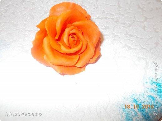 Добрый вечер, Страна! Я все не прекращаю найти свой  метод лепки розы. Приглашаю всех посмотреть на мои попытки. фото 9