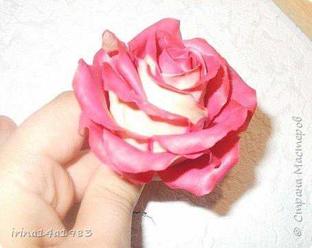 Добрый вечер, Страна! Я все не прекращаю найти свой  метод лепки розы. Приглашаю всех посмотреть на мои попытки. фото 1