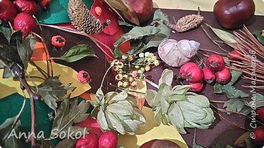 Запасливые ёжики)))) фото 4