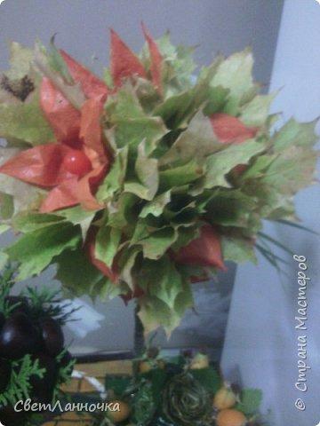 Осенний топиарий в садик фото 2
