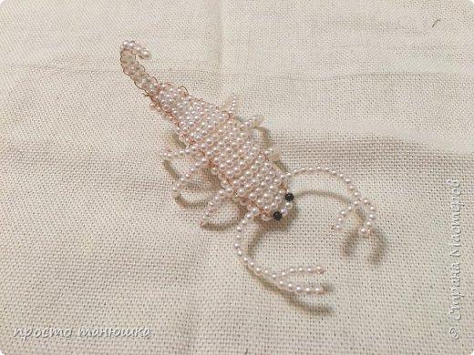 Хочу поблагодарить Марьяну за скорпиона, она живет здесь http://stranamasterov.ru/node/1049846?c=favorite. Этого скорпиончика сделала из бусин 6-7 мм диаметром. фото 3