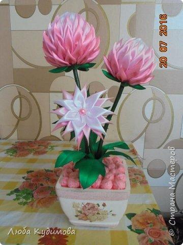 """""""Розовые шары"""" фото 1"""