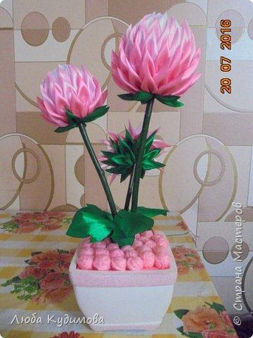 """""""Розовые шары"""" фото 3"""