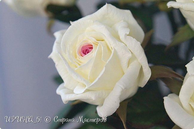 Здравствуйте! Сегодня я с букетом роз. Цветы выполнены из зефирного фома.  Приглашаю к просмотру.  фото 18