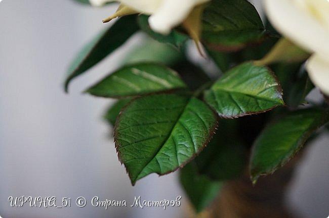 Здравствуйте! Сегодня я с букетом роз. Цветы выполнены из зефирного фома.  Приглашаю к просмотру.  фото 8