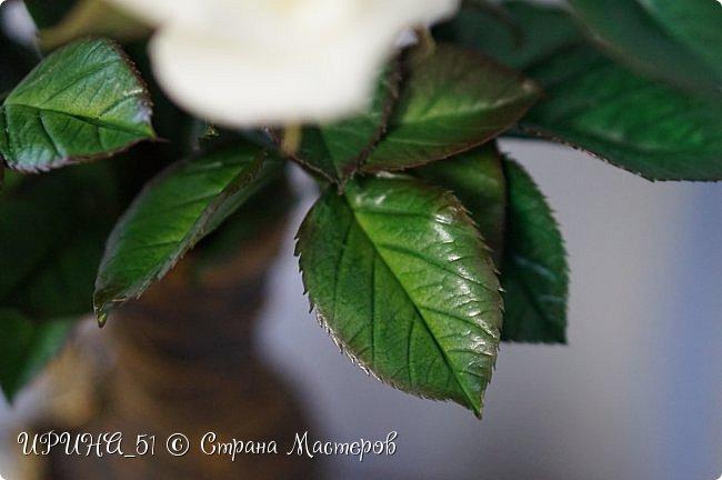 Здравствуйте! Сегодня я с букетом роз. Цветы выполнены из зефирного фома.  Приглашаю к просмотру.  фото 9