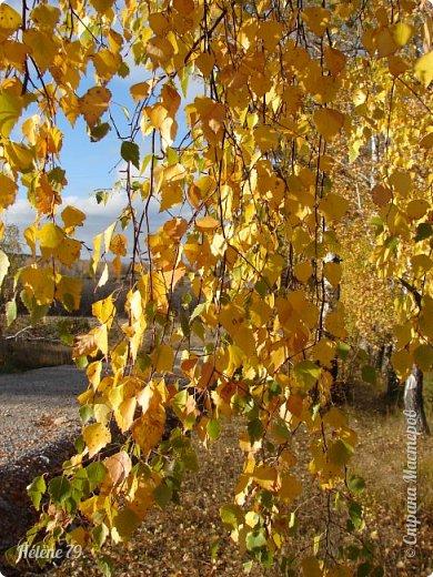 """""""Октябрь уж наступил — уж роща отряхает  Последние листы с нагих своих ветвей; Дохнул осенний хлад — дорога промерзает. Журча еще бежит за мельницу ручей.. фото 48"""
