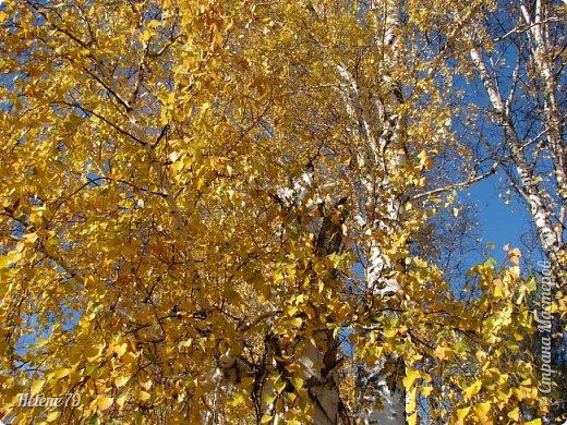 """""""Октябрь уж наступил — уж роща отряхает  Последние листы с нагих своих ветвей; Дохнул осенний хлад — дорога промерзает. Журча еще бежит за мельницу ручей.. фото 49"""
