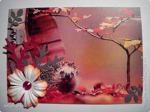 """мои первые работы в этом году открытку делала для игры """"Стрелы Амура"""", посылку отправляла давно, скорее всего она уже  пришла, так что думаю, что я вполне могу выложить содержимое сюда. фото 68"""