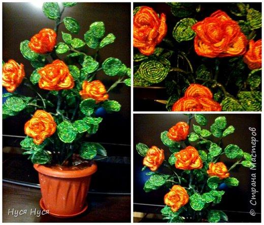 Розы. Бсер. Подарок фото 3