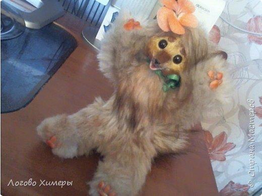 Котик Кокос) Был сделан на заказ) Подвижный каркас и шальная мордочка радуют своего маленького хозяина в городе Сургут фото 6