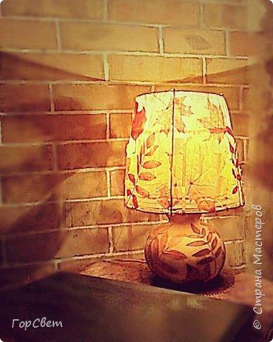 Для основы использована лагенария (бутылочная тыква). Абажур- проволока и тюль + листья. фото 1