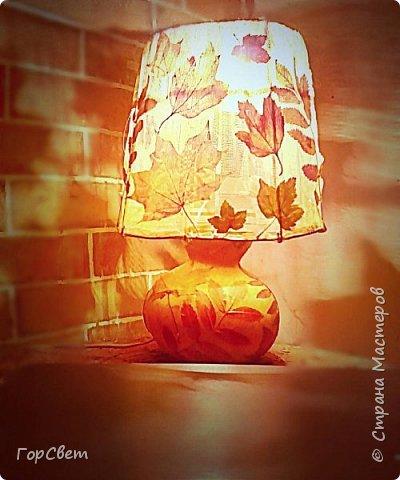 Для основы использована лагенария (бутылочная тыква). Абажур- проволока и тюль + листья. фото 3