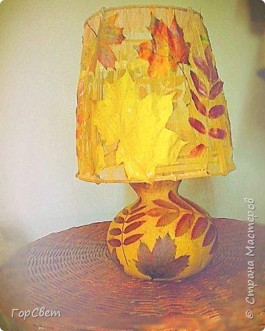 Для основы использована лагенария (бутылочная тыква). Абажур- проволока и тюль + листья. фото 2