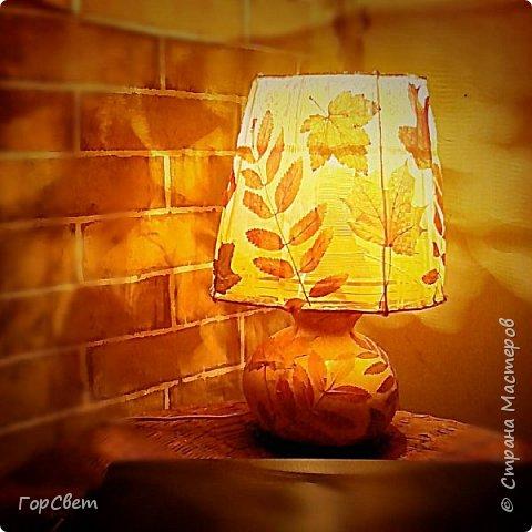 Для основы использована лагенария (бутылочная тыква). Абажур- проволока и тюль + листья. фото 4