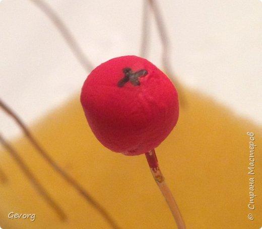 Вот такие ягодки пришлось сделать для нового года,для осени и.д. Для этого нам понадобятся -холодный фарфор -тонкая проволока -красная краска -черный фломастер -лак фото 8