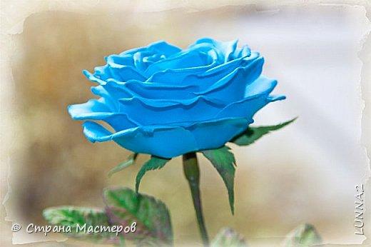 Роза выполнена из зефирного фоамирана голубого цвета, без тонировки. фото 3