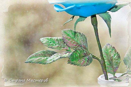 Роза выполнена из зефирного фоамирана голубого цвета, без тонировки. фото 4
