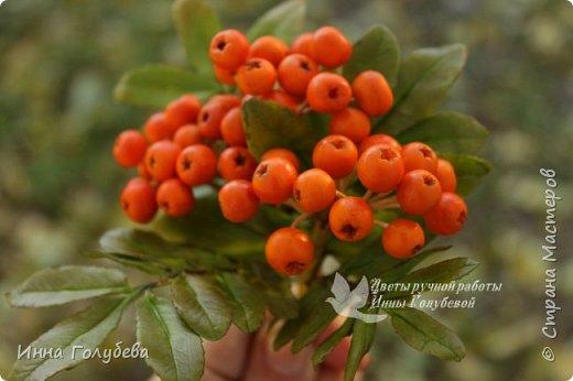 Вот такая оранжевая осень у меня)) фото 8