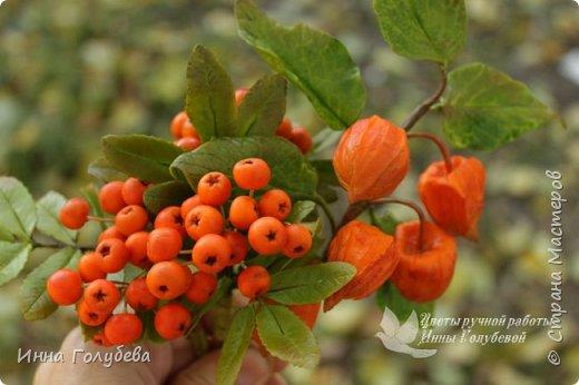 Вот такая оранжевая осень у меня)) фото 1