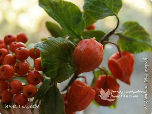 Вот такая оранжевая осень у меня)) фото 14