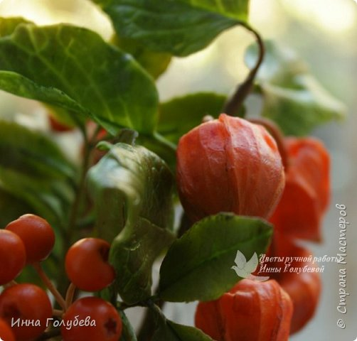 Вот такая оранжевая осень у меня)) фото 12