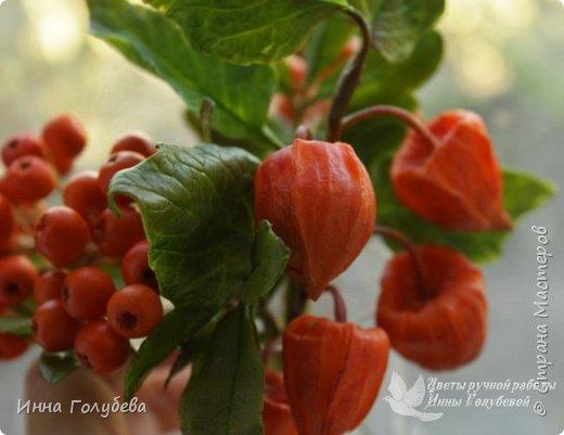 Вот такая оранжевая осень у меня)) фото 13