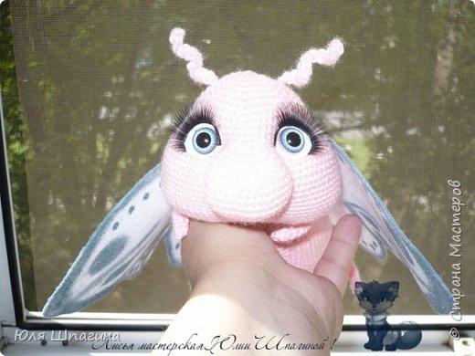 Бабочка . фото 4