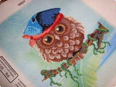 Добрый день дорогие гости и жители нашей Страны!!! Вот решила показать вам вышивку, которую сделала одному замечательному человечку нашей Страны!!! Совушка с пироженкой!!!  фото 5