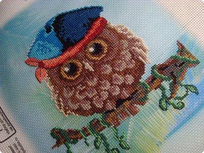 Добрый день дорогие гости и жители нашей Страны!!! Вот решила показать вам вышивку, которую сделала одному замечательному человечку нашей Страны!!! Совушка с пироженкой!!!  фото 8