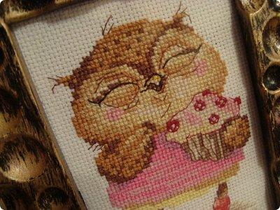 Добрый день дорогие гости и жители нашей Страны!!! Вот решила показать вам вышивку, которую сделала одному замечательному человечку нашей Страны!!! Совушка с пироженкой!!!  фото 3