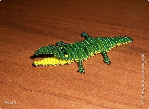 Крокодил и Паук фото 2