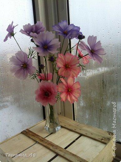 Добрый день, дорогие мастерицы! Выкладываю на ваше обсуждение мои вымученные цветы! Лепила их и занималась самоедством!  Всем была недовольна! И формой и цветом и тд... Но в итого.... понравилось. Фото много..... фото 12