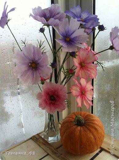 Добрый день, дорогие мастерицы! Выкладываю на ваше обсуждение мои вымученные цветы! Лепила их и занималась самоедством!  Всем была недовольна! И формой и цветом и тд... Но в итого.... понравилось. Фото много..... фото 14
